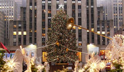 christmas tree lighting nyc 2017 the 2017 rockefeller center christmas tree arrives today