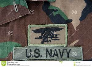 Navy SEAL Trident On Camoflauge Stock Photo - Image: 18247588