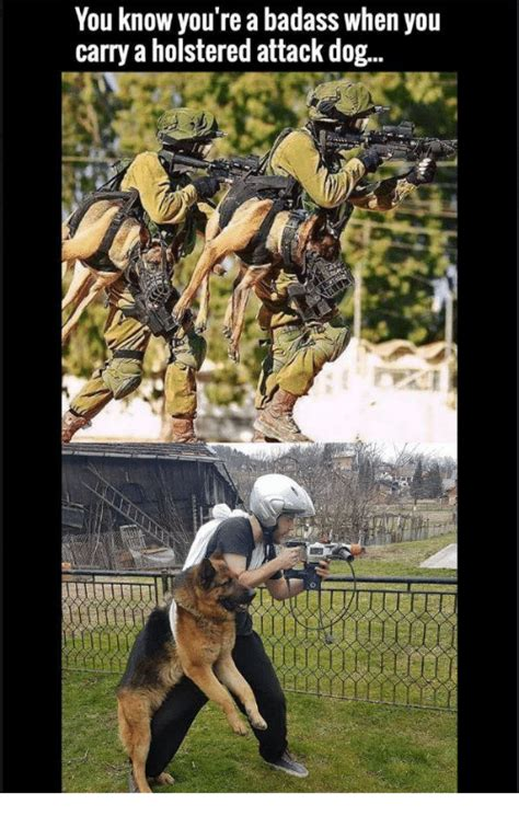 You Re A Badass Meme - you know you re a badass when you carry a holstered attack dog dog irl meme on me me