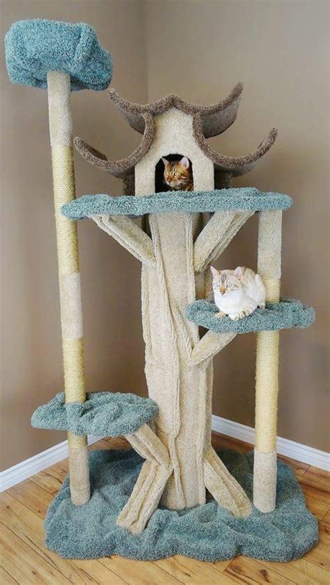 arbre a chat maison l arbre 224 chat un terrain d aventures et de repos pour votre ami archzine fr