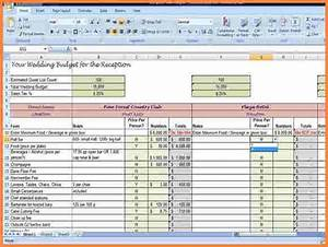 Credit Card Payoff Spreadsheet 9 Budget Planning Spreadsheet Excel Spreadsheets Group