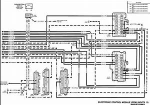 1990 Chevrolet K1500 Engine Diagram  1990  Free Engine