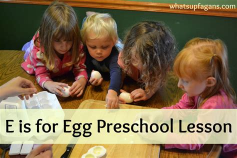 nine learning experiences for preschool 4 learning experie 109 | 4611aa9c1fd705e0833639a5f9ce2f74