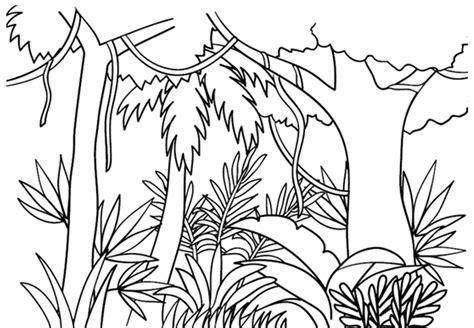 gambar mewarnai gambar pemandangan hutan untuk anak
