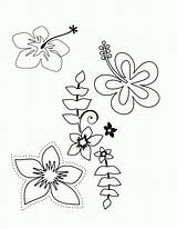 Coloring Pages Flower Hawaiian Tropical Luau Hawaii Printable Themed Plumeria Flowers Drawing Tattoos Tattoo Templates Sheets Colouring Adult Popular Getcolorings sketch template
