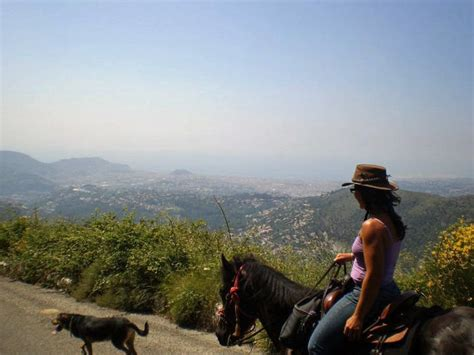 escapade a cheval sur les hauteurs de