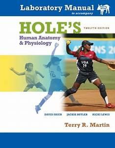 Laboratory Manual T  A Hole U0026 39 S Human Anatomy  U0026 Physiology
