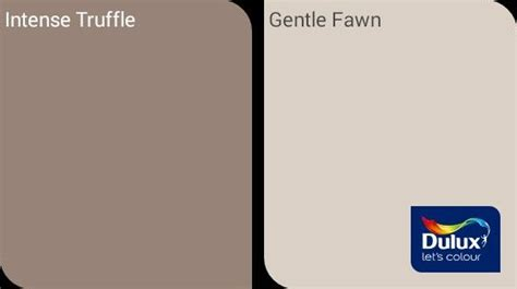 truffle and gentle fawn dulux paint