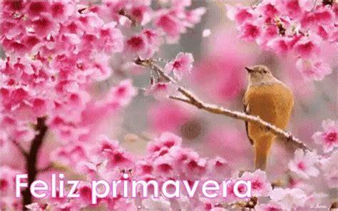 Pájaro Feliz PrimaveraPajaro FelizPrimavera Petalos