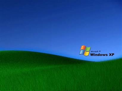 Xp Windows Grass Wallpapers Desktop Backgrounds Wallpapersafari