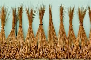 Weidenruten Zum Pflanzen Kaufen : 50x weidenruten 150 170 bauen flechten stecken ebay ~ Lizthompson.info Haus und Dekorationen