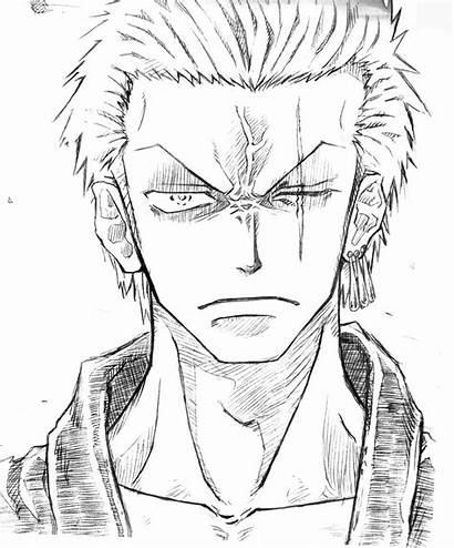 Zoro Piece Luffy Sketch Anime Roronoa Coloring