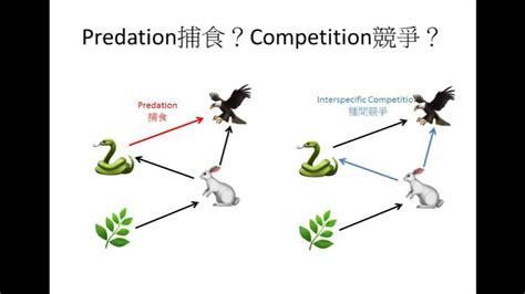 Dse Bio 食物網與生態平衡 Food Web And Ecological Balance-ecology