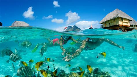 Bora Bora Vacation Package Deals Lamoureph Blog