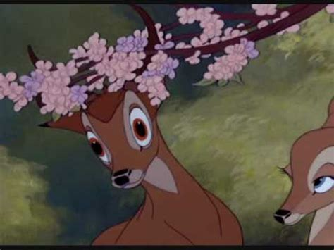 bambi  faline love story youtube