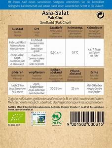 Pak Choi Samen : samen maier bio asia salat senfkohl pak choi 1 packung bloomling sterreich ~ Orissabook.com Haus und Dekorationen