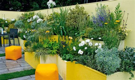 alan titchmarsh s tips for a small garden garden life style express co uk
