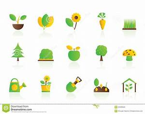 Different Plants And Gardening Icons Stock Vector ...