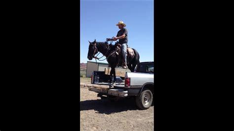 cowboy loads mustang  dodge truck youtube