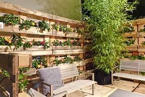 Gartenblog Geniesser Garten Gartenmesse Giardina In