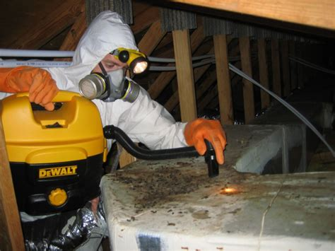 Orlando Exterminators  Rat Removal For Fl, Florida. Best Mortgage Rates In Ny Parker Mini Storage. Transfer Credit Card Debt Bethesda Web Design. Technology In Education Single Sign On Tamucc. How To Host Your Website For Free. Best Banks To Get A Home Loan. Best Dentists In Pittsburgh Au Pair Travel. Microsoft Antivirus For Server. Brooklyn Personal Injury Lawyers