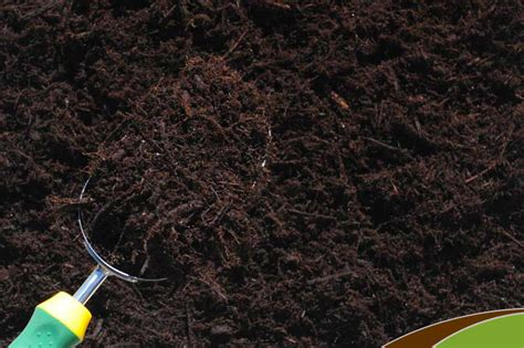 ground bark mulch triple ground mulch