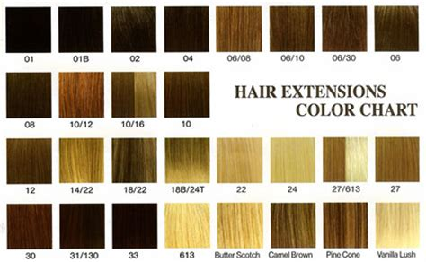 Hair Color Descriptions by Fashion Wigs Hair Pieces Lace Front Wigs Human Hair