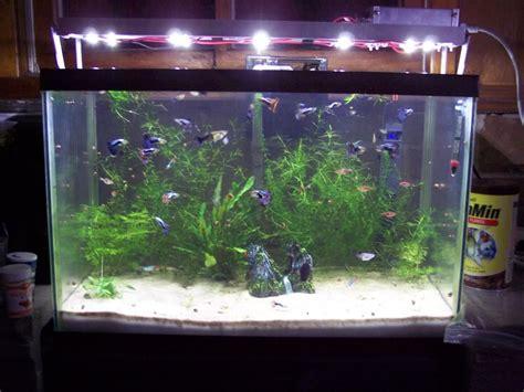 led aquarium lighting planted tank led light planted aquarium iron blog