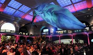 Museum of Natural History Party | Star Talent Inc.