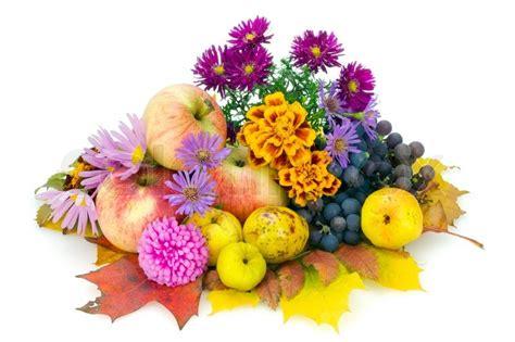Pflanzen Im Oktober by Autumn Still Composition October European Plants