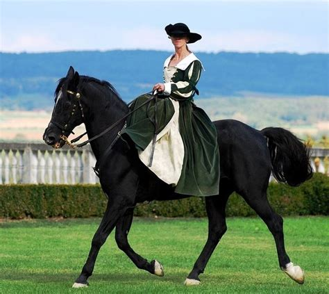 let s ride number 7 lizzie and darcy and pemberley closed horses show horses side saddle
