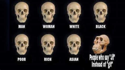 Skull Comparisons