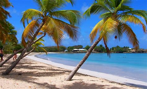 barbados air tours  inter island tours