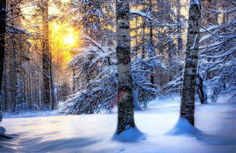 winter desktop background wallpapertag