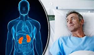 Kidney Cancer Symptoms  Male Sex Hormones Could Be Reason Why More Men Suffer