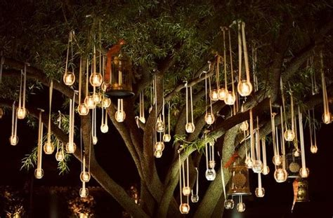 lights hanging from trees wedding search bist