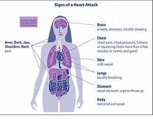 Information On Heart Disease  What Is Heart Disease  How