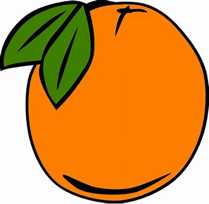 Orange Clip Domain Clker Fruit Clipart Tree