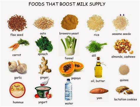 Foods That Boost Milk Supply Wwwperfectdaysczblogspotcz
