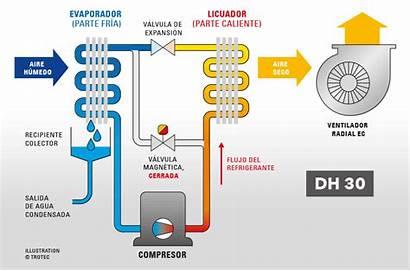 Dh Trotec Secador Industrial