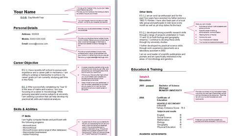 school leaver resume exle exles of resumes
