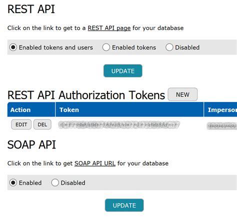 rest soap api options teamdesk