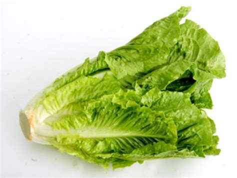 romaine lettuce nutrition facts health benefits