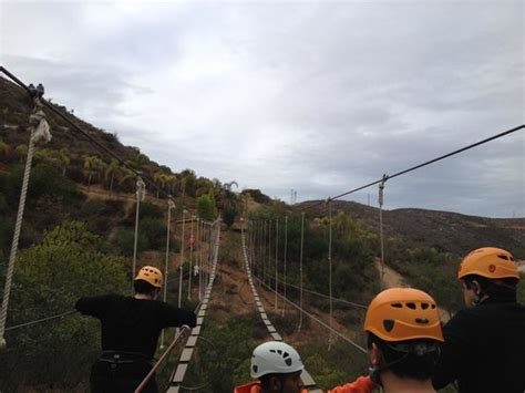 las canadas canopy tour bridge between zip lines picture of las canadas canopy
