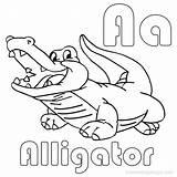 Alligator Coloring Pages Printable Drawing Crocodile Easy Sheets Getdrawings Line Getcolorings Paintingvalley Template sketch template