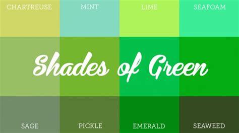 mesmerizing impact  green colored brand identity