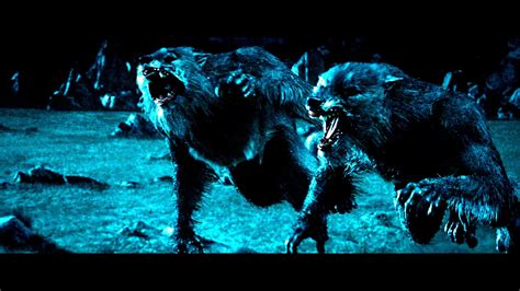 anime fantasy thriller werewolf images and wallpapers 74 images