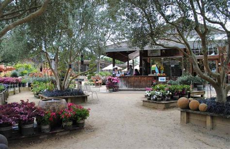 Cottage Gardens In Petaluma  Garden Up's Next Stop