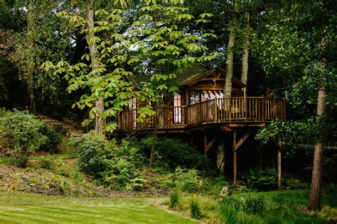 House In Tree by Blue Forest Treehouses Xo