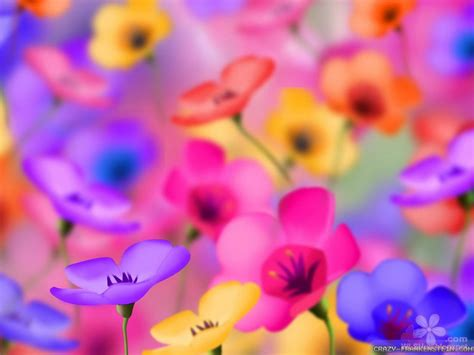 fantasy flowers wallpapers   hd pictures